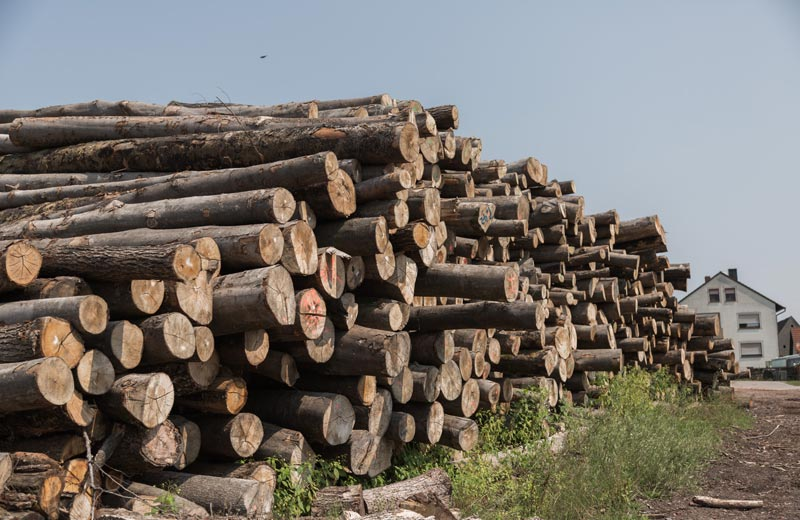 brennholz-2